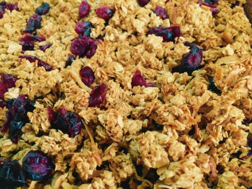 Vegan coconut cranberry granola
