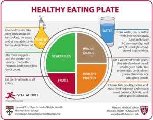 No Dairy on Harvard's Healthy Eating Plate